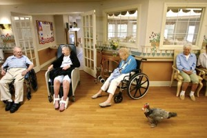 assistedlivingcenters