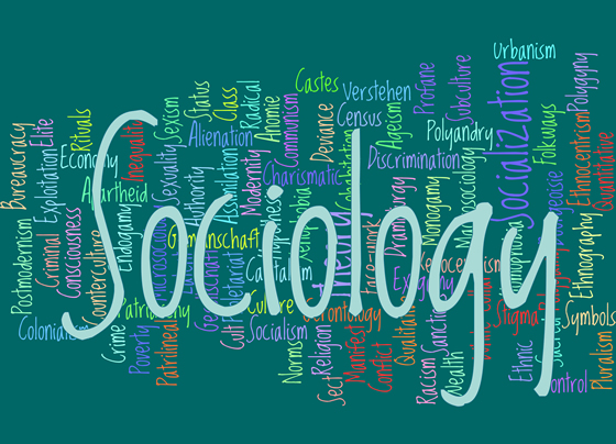 importance of sociology Why christians should study sociology this chapter acknowledges misconceptions associated with so-ciology and discusses the reason for the inclusion of sociology as important account of the self and others, and (2) through it one can obtain.